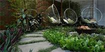 我只想要一个院子,简单的过一辈子!