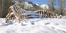来源于自然的创造 艺术家建造的脊柱一样的通道